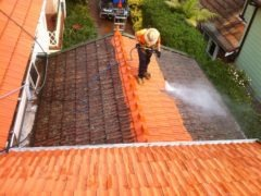 Roof Cleaning 5